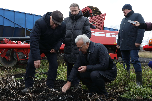 Рекорд был в 2019 году, в этом урожай еще больше: Александр Усс побывал на уборке картофеля в Сухобузимо